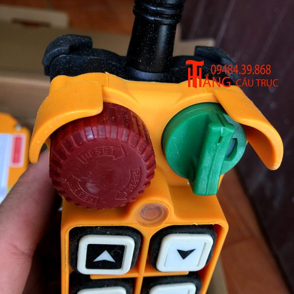 Telecrane-f24-12d